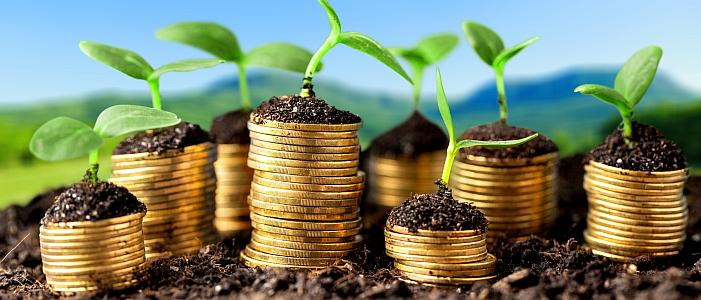 Hulp nodig bij een nieuw businessmodel? Power-ED helpt bij de ontwikkeling en het aanvragen van passende (subsidie)regelingen.