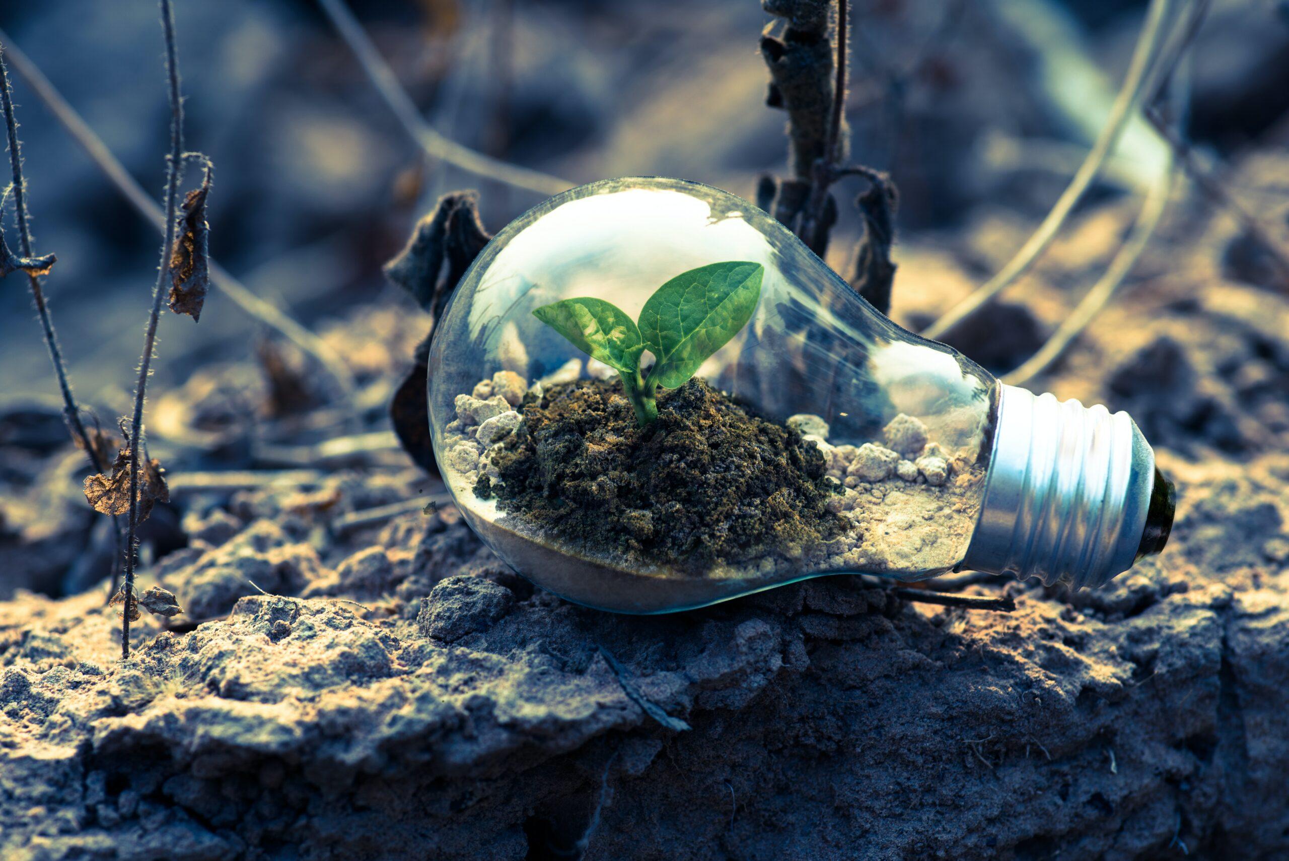 duurzaam ondernemen energie besparen